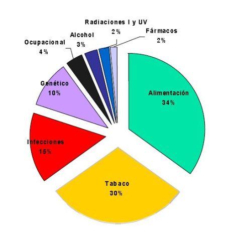 Gráfico de causantes de cancer